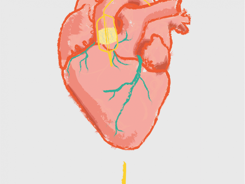 Arushee-Agrawal-Heart-Illustration